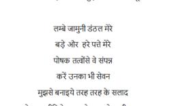 Hindi-beetroot-chukandar