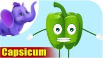 Shimlaamirch (Capsicum) – Vegetable Rhymes in Hindi