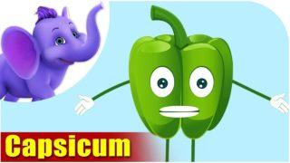 Simla Mirchi (Capsicum) – Vegetable Rhymes in Marathi