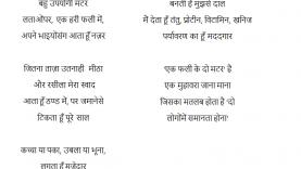 Hindi-peas-matar lyrics