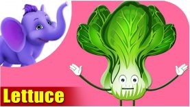 Salaad Patta (Lettuce) – Vegetable Rhymes in Hindi