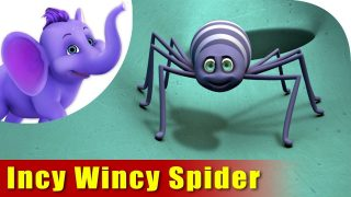 Incy Wincy Spider climbed up the water spouts – Nursery Rhyme