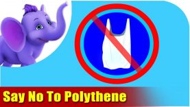 Say No To Polythene – Environmental Song in Ultra HD (4K)