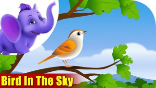 Birds in the Sky in Ultra HD (4K)