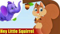 Hey Little Squirrel in Ultra HD (4K)