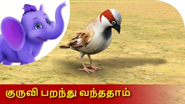 Kuruvi Paranthu Vanthathaam – Tamil Nursery Rhyme for Children in 4K by Appu Series