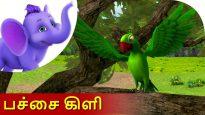Pachai Kili – Tamil Nursery Rhyme for Kids in 4K by Appu Series