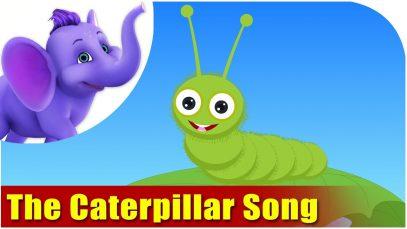 The Caterpillar Song in Ultra HD (4K)