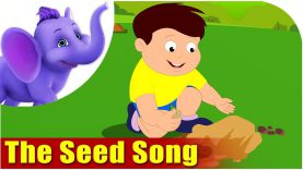The Seed Song in Ultra HD (4K)