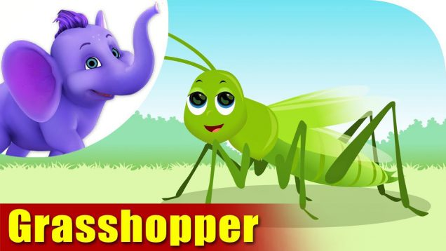 Grasshopper – A Bug Song (4K)