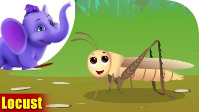 Locust – A Bug Song (4K)