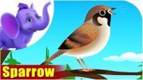Sparrow – Bird Song (4K)