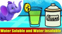 Water Soluble and Water Insoluble – Song on Learning Science