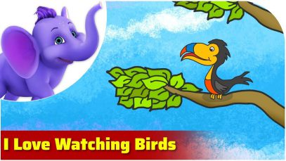 I Love Watching Birds